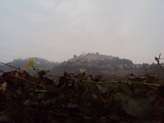 Autunno in Monferrato